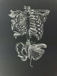 Flowers in my Lungs